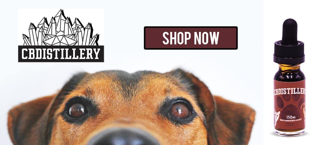 cbdistillery-pet-tincture